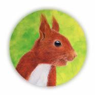 Eichhörnchen Profilbild